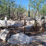 Rustic pond fence